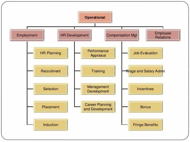 What is Human Resource Management (HRM)? - Management Study HQ