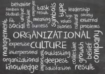 The Role of Motivation in Organizational Behavior